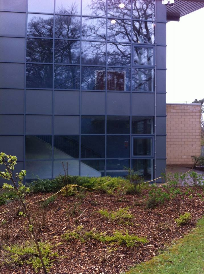 Clean commercial windows